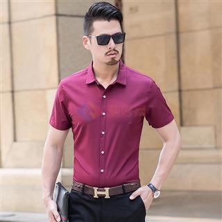 促销买一送一夏季新款男士商务时尚修身纯色 男款短袖衬衫